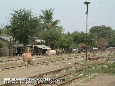 Gare - Station de train de Battambang